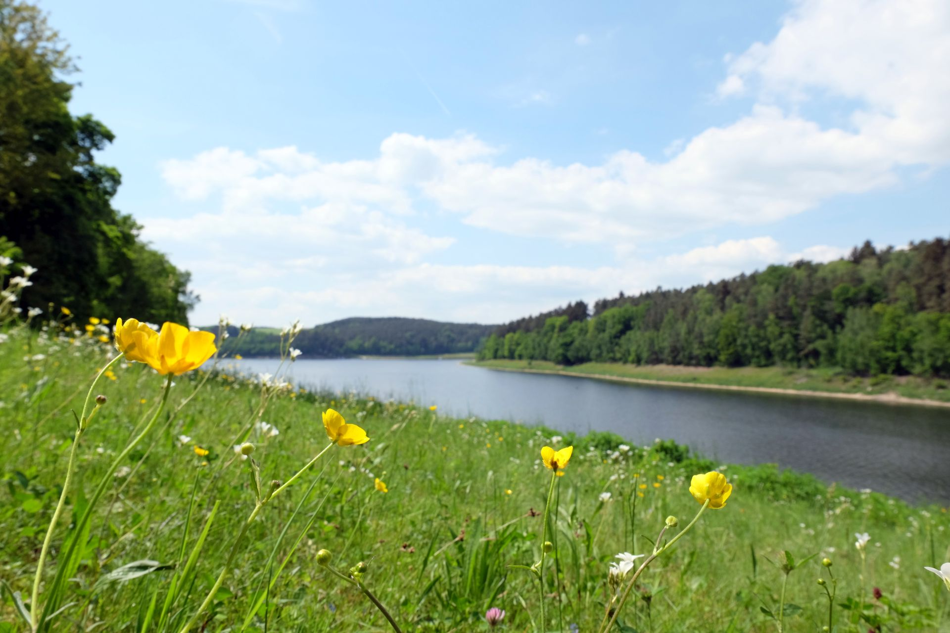 Eixendorfer See | © Thomas Kuhnt