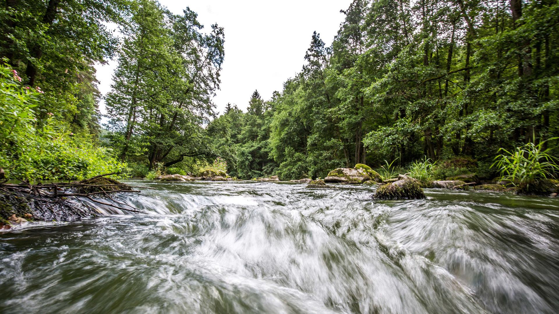 Flüsse im Oberpfälzer Seenland | © Thomas Kujat