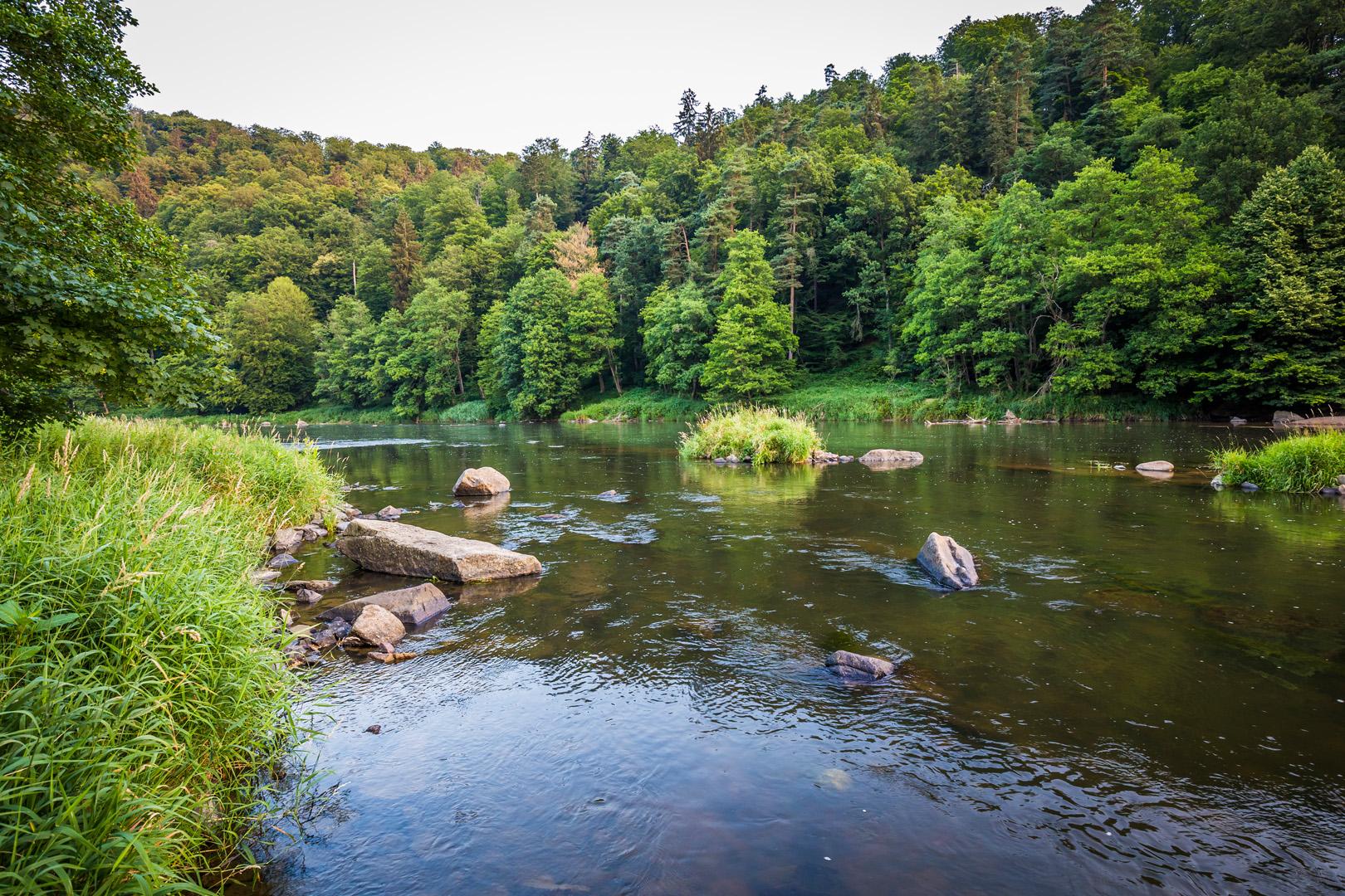 Natur im Oberpfälzer Seenland | © Thomas Kujat