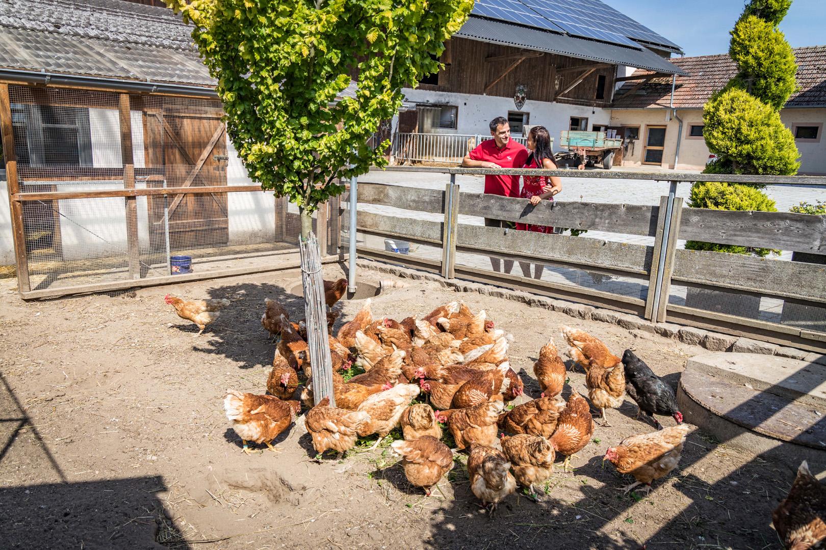 Direktvermarkter | © Tourismuszentrum Oberpfälzer Wald