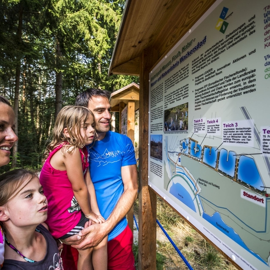 Wackersdorf Erlebnispark Wasser Fisch Natur 1 Foto Thomas Kujat